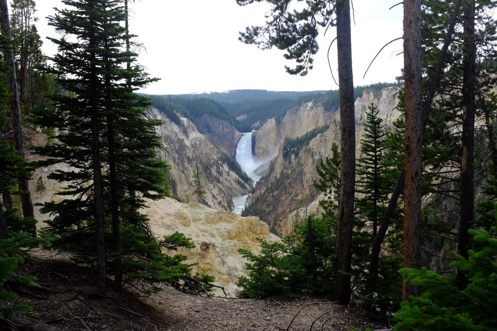 yellowstone hikes
